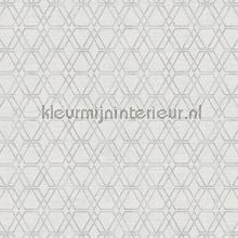 Unito Esagono papel de parede Arte Design Lux 22712