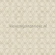 Unito Esagono papel de parede Arte Design Lux 22714