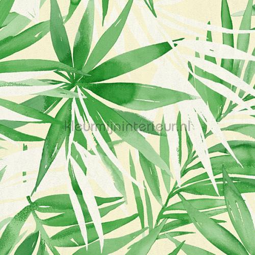 Groot tropische bladmotief behang 341252 behang Top 15 AS Creation
