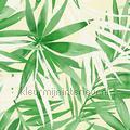 Groot tropische bladmotief aanbieding behang aanbieding behang