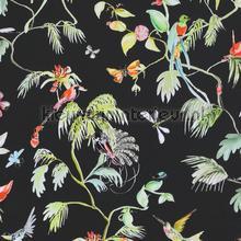 Colourful exotic designed birds black carta da parati BN Wallcoverings Designed for Living 17712