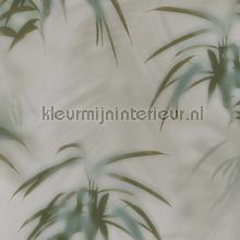 Edward van Vliet faded palms tapet BN Wallcoverings Dimensions 219544