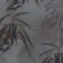 Edward van Vliet faded palms tapet BN Wallcoverings Dimensions 219545