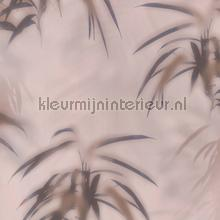 Edward van Vliet faded palms tapet BN Wallcoverings Dimensions 219546