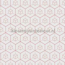 Edward van Vliet Hexagon cubic mix tapet BN Wallcoverings Dimensions 219564