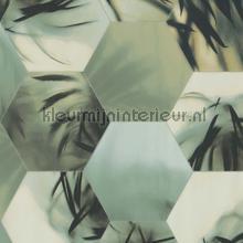 Edward van Vliet hexagon palms tapet BN Wallcoverings Dimensions 219570