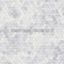 Edward van Vliet hexagon ritmepatroon tapet BN Wallcoverings Dimensions 219580