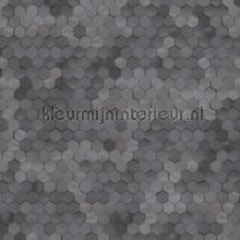 Edward van Vliet hexagon ritmepatroon tapet BN Wallcoverings Dimensions 219581