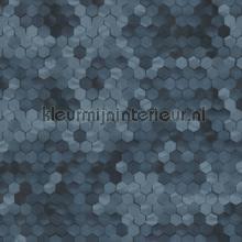 Edward van Vliet hexagon ritmepatroon tapet BN Wallcoverings Dimensions 219582