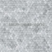 Edward van Vliet hexagon ritmepatroon tapet BN Wallcoverings Dimensions 219583