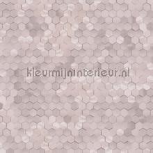 Edward van Vliet hexagon ritmepatroon tapet BN Wallcoverings Dimensions 219584