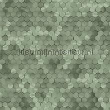 Edward van Vliet hexagon ritmepatroon tapet BN Wallcoverings Dimensions 219586