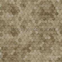 Edward van Vliet hexagon ritmepatroon tapet BN Wallcoverings Dimensions 219587