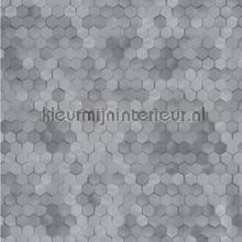 Edward van Vliet hexagon ritmepatroon tapet BN Wallcoverings Dimensions 219588