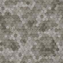 Edward van Vliet hexagon ritmepatroon tapet BN Wallcoverings Dimensions 219589