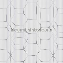 Edward van Vliet faded lines and hexagons tapet BN Wallcoverings Dimensions 219600