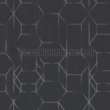 Edward van Vliet faded lines and hexagons tapet BN Wallcoverings Dimensions 219603