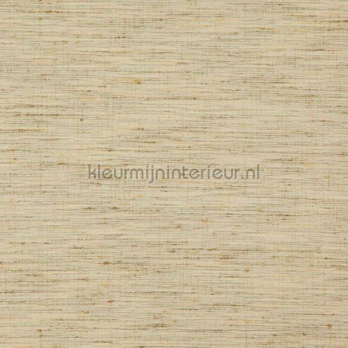 Driftwood warm beige carta da parati driftwood-02 speciale DWC