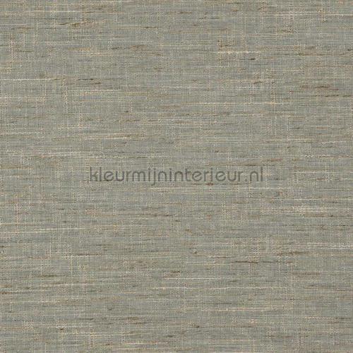 Driftwood vintage green carta da parati driftwood-10 speciale DWC