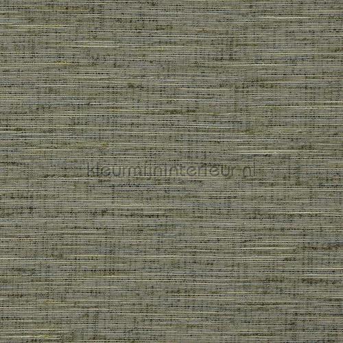 Driftwood forest green tapeten driftwood-34 besonder DWC