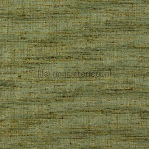 Driftwood olive green carta da parati driftwood-44 speciale DWC