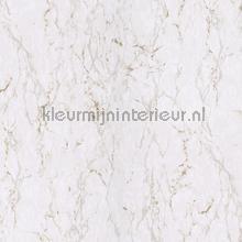 marmor tapet Khroma Earth ear002