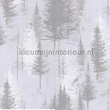 lucus tapet Khroma Earth ear102