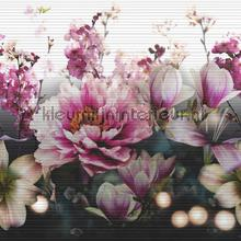Momoka frize border rose pink behang Arthouse randen