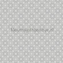 Orbit papier peint Dutch Wallcoverings Eclipse FD23830