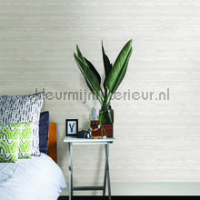 Houtnerven Illusion wallcovering Dutch Wallcoverings Eclipse FD23839