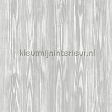 Houtnerven Illusion behang Dutch Wallcoverings Modern Abstract