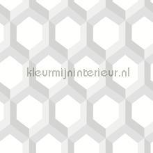 3d hexagon wallcovering Dutch Wallcoverings Eclipse FD23840