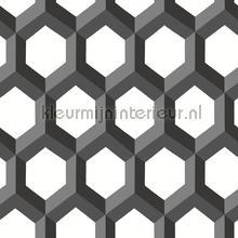 3d hexagon wallcovering Dutch Wallcoverings Eclipse FD23841