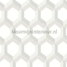 3d hexagon wallcovering Dutch Wallcoverings Eclipse FD23842