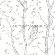 Hoge bomen met uilen papier peint Dutch Wallcoverings Eclipse FD23860