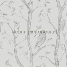 Hoge bomen met uilen papier peint Dutch Wallcoverings Eclipse FD23861