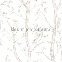 Hoge bomen met uilen papier peint Dutch Wallcoverings Eclipse FD23862