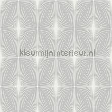 Flare wallcovering Dutch Wallcoverings Eclipse FD23871