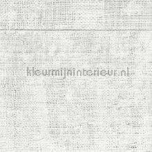Atelier d Artiste lichtgrijs behang Elitis Eldorado VP-880-01