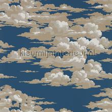 Silvi clouds tapeten Sanderson Trendy