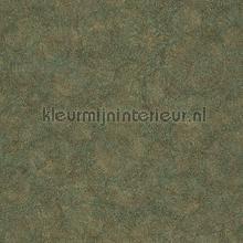 fossilium tapet Casadeco Encyclopedia II encc84517323