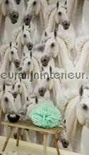 Horses fotobehang Onszelf Enjoy OZ-3121