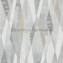 Vertices Slate-Concrete tapet Harlequin Entity 111703