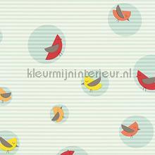 Vogels in cirkels met gelineerde achterg tapeten AS Creation Esprit Kids 4 302983