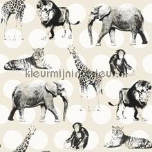 In de jungle met stip papier peint Esta for Kids Everybody Bonjour 137-128-712