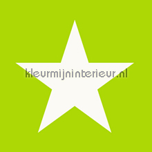 Big star papier peint Esta for Kids Everybody Bonjour 137-138-708