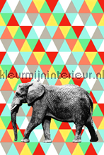 Olifant fototapet Esta for Kids Everybody Bonjour 137-158-707