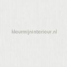 Meru tapet Hookedonwalls Exotique 17201