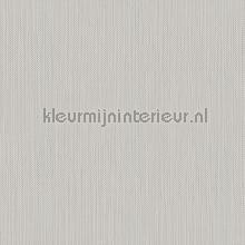 Meru tapet Hookedonwalls Exotique 17203