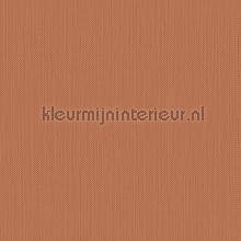 Meru tapet Hookedonwalls Exotique 17206